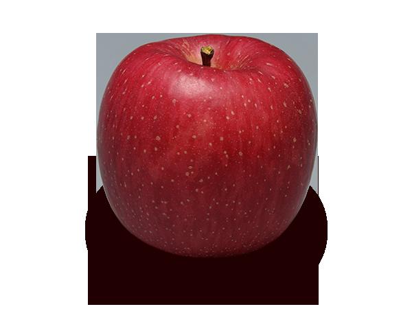 りんごの品種 ふじ
