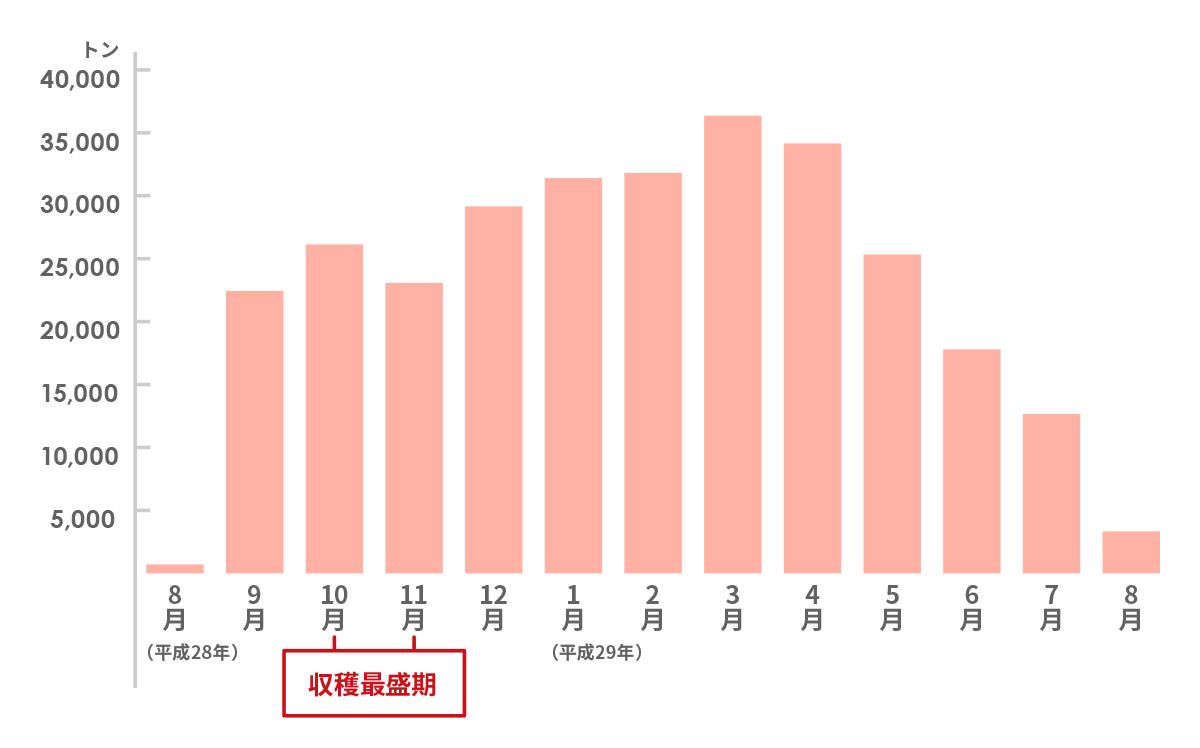 月別の県外出荷実績(平成28年産)
