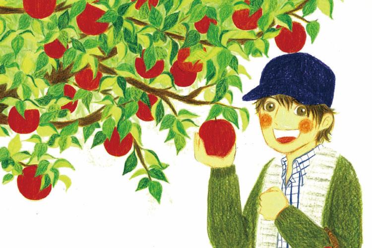 青森りんごができるまで(小学校低学年向け)