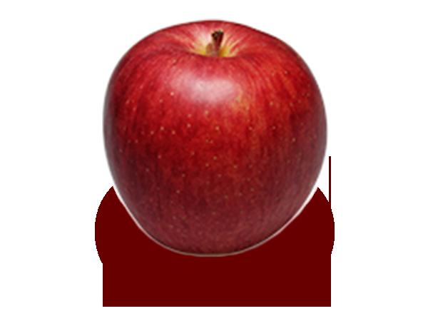 りんごの品種 つがる