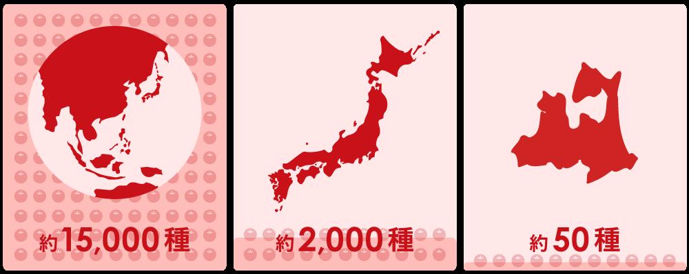 世界・日本・青森県のりんごの種類数
