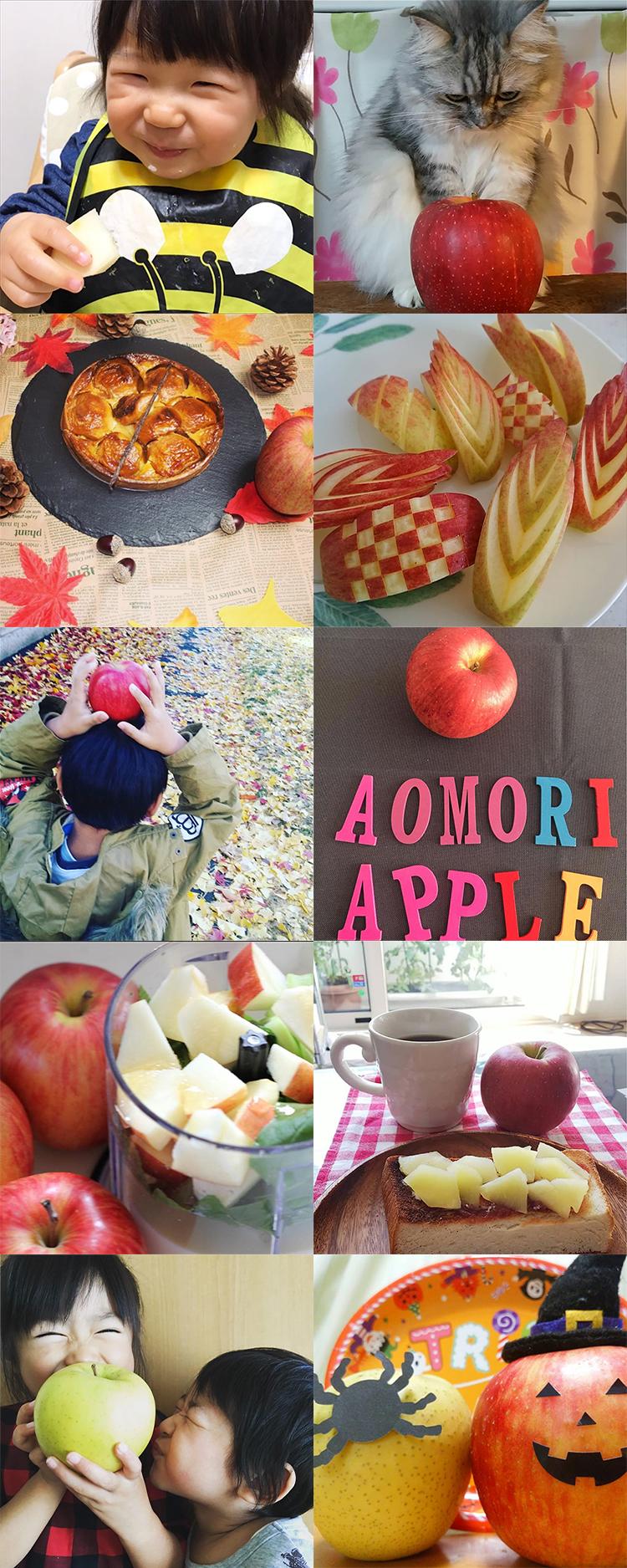 私の美活は食べるだけ青森りんごキャンペーン10月結果