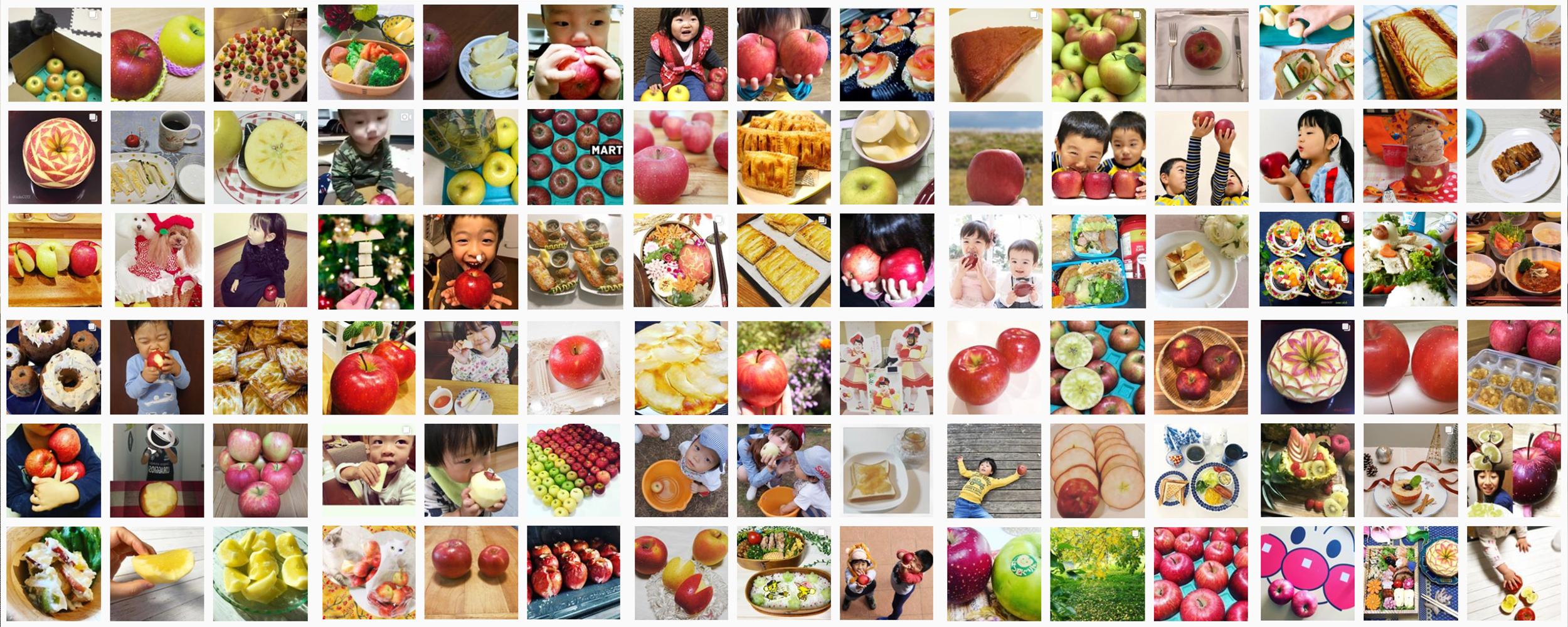 私の美活は食べるだけ青森りんごキャンペーン11月結果