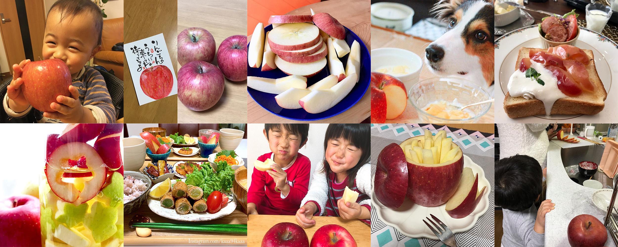 私の美活は食べるだけ青森りんごキャンペーン2月結果