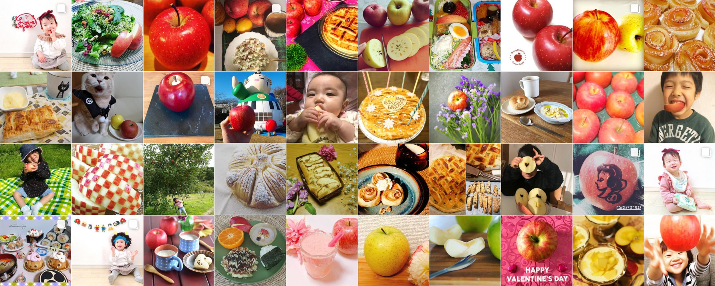 私の美活は食べるだけ青森りんごキャンペーン2月 投稿写真