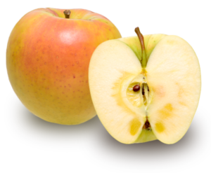 りんごの品種 ぐんま名月