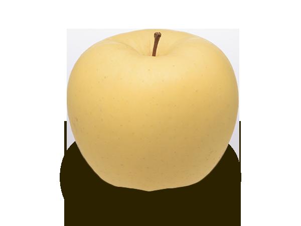 りんごの品種 金星)