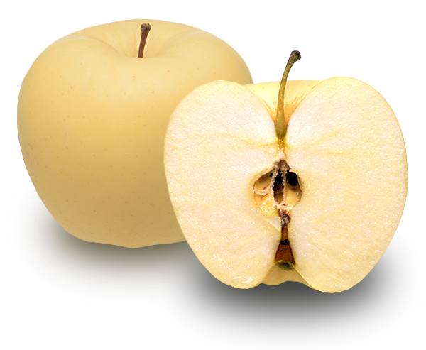 りんごの品種 金星