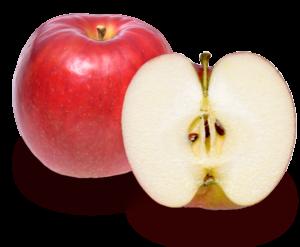 りんごの品種 紅玉