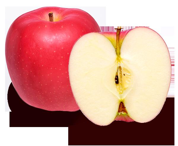 りんごの品種 陸奥