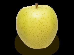 りんごの品種 王林