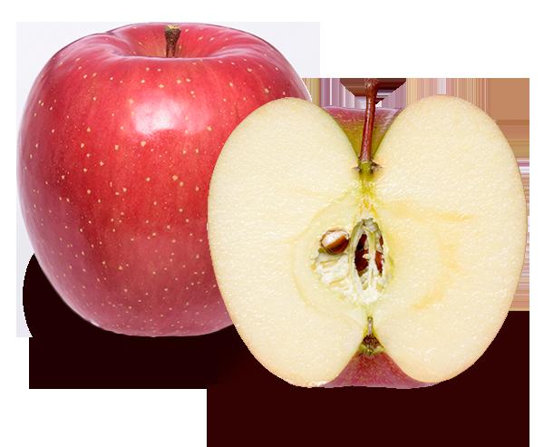 りんごの品種 サンふじ