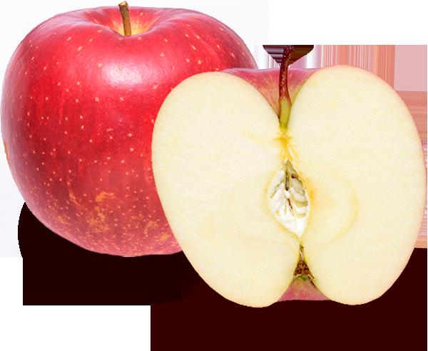 りんごの品種 世界一