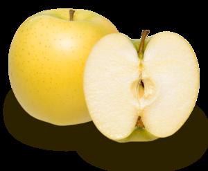 りんごの品種 シナノゴールド
