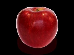 りんごの品種 紅(べに)はつみ