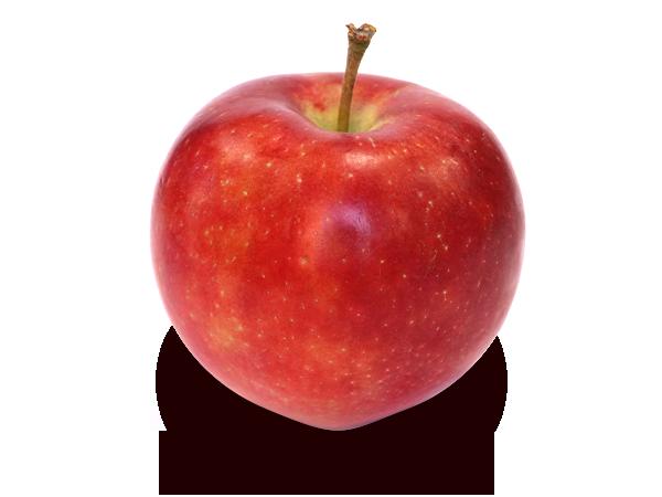りんごの品種 恋空(こいぞら)