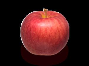 りんごの品種 未希(みき)ライフ