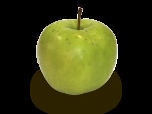 りんごの品種 夏緑(なつみどり)