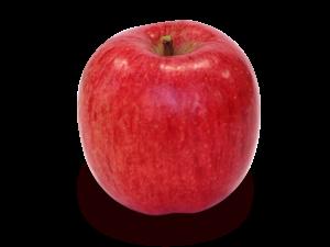 りんごの品種 春明21(しゅんめいにじゅういち)
