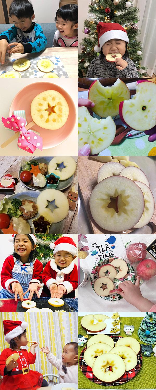 青森りんごでスターカットキャンペーン12月結果