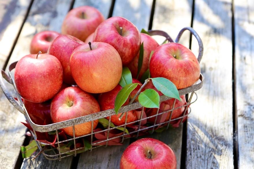 りんごの秘蜜 りんごの本当の甘い場所