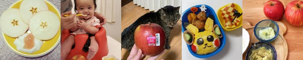 青森県産りんごプレゼントキャンペーン2020年10月抽選当選
