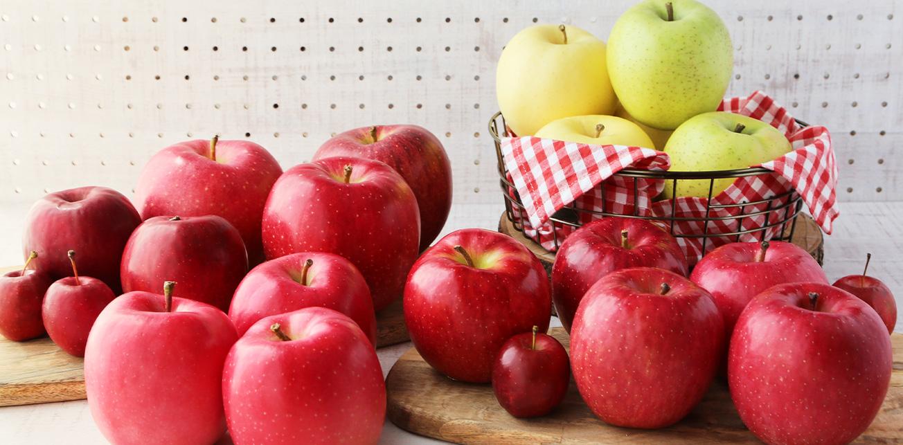 青森りんご公式サイト 青森県りんご対策協議会