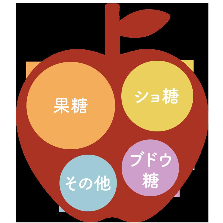 りんごの糖分構成イメージ