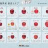 「大人の青森りんご品種下敷き」が無料でダウンロードできます!
